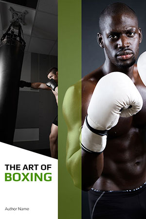 The Art of Boxing